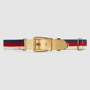 Gucci Sylvie Web Belt with Square Buckle